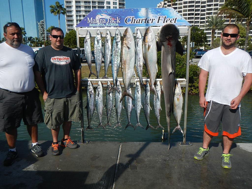 Sarasota charter fishing offshore gulf fishing trip charters for Sarasota deep sea fishing charters